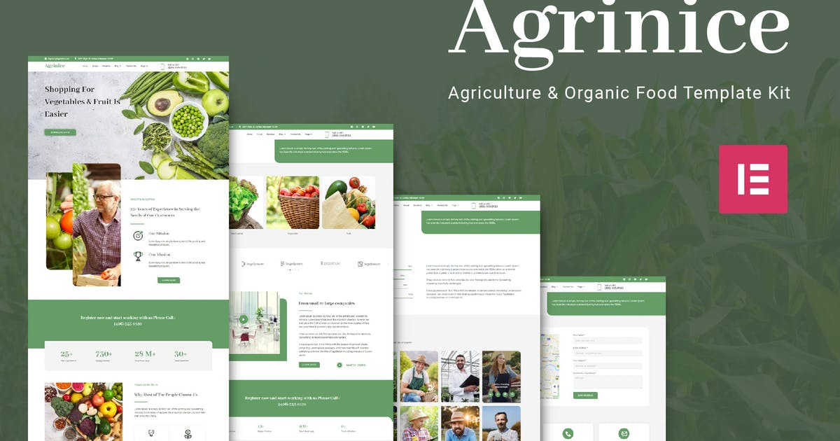 Download Agrinice - Agriculture and Organic Food Template Kit by SabrCreative