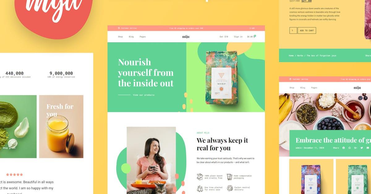 Download Miju - Conscious Business Elementor Template Kit by AwakenedTemplates