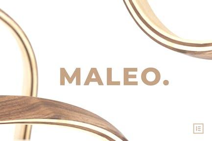 Maleo - Minimal Home Decor & Furniture Template Kit