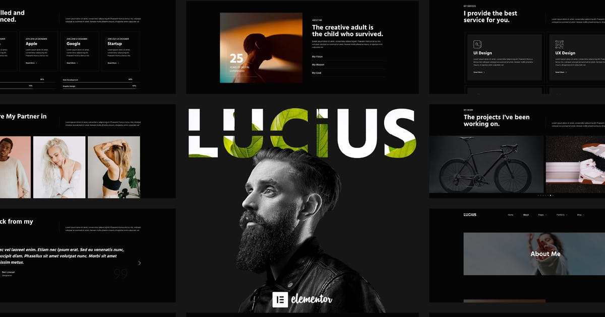 Download Lucius - Personal Portfolio Elementor Template Kit by UNQDesign